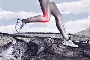 specialty knee
